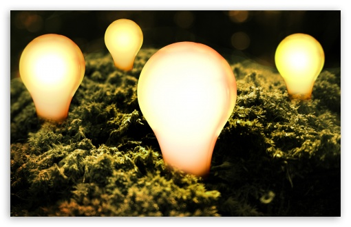 Bulbs Lit HD wallpaper for Wide 16:10 5:3 Widescreen WHXGA WQXGA WUXGA WXGA WGA ; HD 16:9 High Definition WQHD QWXGA 1080p 900p 720p QHD nHD ; Standard 3:2 Fullscreen DVGA HVGA HQVGA devices ( Apple PowerBook G4 iPhone 4 3G 3GS iPod Touch ) ; iPad 1/2/Mini ; Mobile 4:3 5:3 3:2 16:9 - UXGA XGA SVGA WGA DVGA HVGA HQVGA devices ( Apple PowerBook G4 iPhone 4 3G 3GS iPod Touch ) WQHD QWXGA 1080p 900p 720p QHD nHD ;
