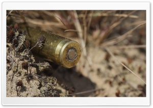 Bullet HD Wide Wallpaper for Widescreen