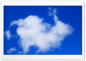 Bunny Rabbit Cloud HD Wide Wallpaper for Widescreen