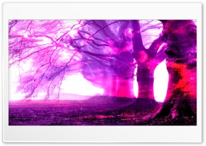 Burned Pink Ultra HD Wallpaper for 4K UHD Widescreen desktop, tablet & smartphone