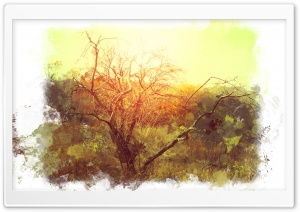 Bushveld Art HD Wide Wallpaper for Widescreen