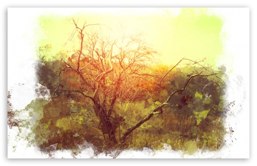 Bushveld Art ❤ 4K UHD Wallpaper for Wide 16:10 5:3 Widescreen WHXGA WQXGA WUXGA WXGA WGA ; 4K UHD 16:9 Ultra High Definition 2160p 1440p 1080p 900p 720p ; Standard 4:3 5:4 3:2 Fullscreen UXGA XGA SVGA QSXGA SXGA DVGA HVGA HQVGA ( Apple PowerBook G4 iPhone 4 3G 3GS iPod Touch ) ; iPad 1/2/Mini ; Mobile 4:3 5:3 3:2 16:9 5:4 - UXGA XGA SVGA WGA DVGA HVGA HQVGA ( Apple PowerBook G4 iPhone 4 3G 3GS iPod Touch ) 2160p 1440p 1080p 900p 720p QSXGA SXGA ;
