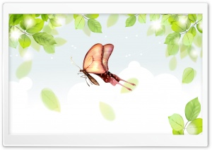 Butterflies Illustration 2 HD Wide Wallpaper for Widescreen
