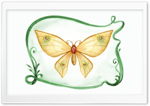 Butterfly Art HD Wide Wallpaper for Widescreen