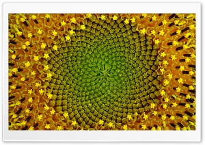 Caleidoscope Ultra HD Wallpaper for 4K UHD Widescreen desktop, tablet & smartphone