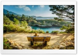 California Bench Ultra HD Wallpaper for 4K UHD Widescreen desktop, tablet & smartphone