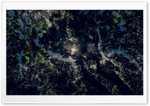 Calm Ultra HD Wallpaper for 4K UHD Widescreen desktop, tablet & smartphone