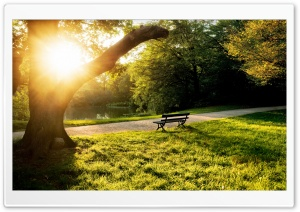 Calm Afternoon HD Wide Wallpaper for Widescreen