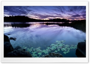 Calm Dusk HD Wide Wallpaper for Widescreen