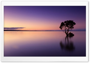 Calm Ocean Dusk HD Wide Wallpaper for Widescreen