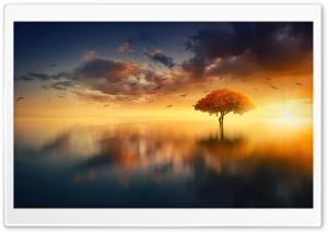 Calm Water Aesthetic Ultra HD Wallpaper for 4K UHD Widescreen desktop, tablet & smartphone