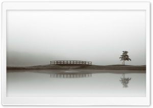 Calm Water, Bridge, Tree Reflection HD Wide Wallpaper for Widescreen