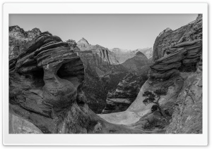 Canyon Overlook, Zion, Landscape Black and White Ultra HD Wallpaper for 4K UHD Widescreen desktop, tablet & smartphone