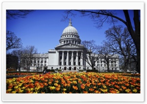 Capitol Building HD Wide Wallpaper for Widescreen