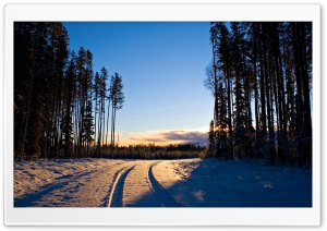 Car Snow Tracks HD Wide Wallpaper for Widescreen