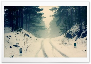Car Snow Tracks Through The Forest Road HD Wide Wallpaper for Widescreen