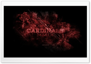 Cardinals HD Wide Wallpaper for 4K UHD Widescreen desktop & smartphone