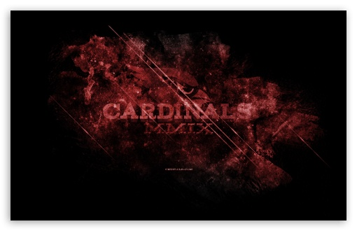 Cardinals HD wallpaper for Wide 16:10 5:3 Widescreen WHXGA WQXGA WUXGA WXGA WGA ; HD 16:9 High Definition WQHD QWXGA 1080p 900p 720p QHD nHD ; Standard 4:3 3:2 Fullscreen UXGA XGA SVGA DVGA HVGA HQVGA devices ( Apple PowerBook G4 iPhone 4 3G 3GS iPod Touch ) ; Tablet 1:1 ; iPad 1/2/Mini ; Mobile 4:3 5:3 3:2 16:9 5:4 - UXGA XGA SVGA WGA DVGA HVGA HQVGA devices ( Apple PowerBook G4 iPhone 4 3G 3GS iPod Touch ) WQHD QWXGA 1080p 900p 720p QHD nHD QSXGA SXGA ;