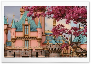 Castle Springtime HD Wide Wallpaper for Widescreen