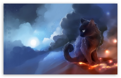 Cat Fire UltraHD Wallpaper for Wide 16:10 5:3 Widescreen WHXGA WQXGA WUXGA WXGA WGA ; 8K UHD TV 16:9 Ultra High Definition 2160p 1440p 1080p 900p 720p ; Mobile 5:3 16:9 - WGA 2160p 1440p 1080p 900p 720p ;