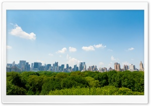 Central Park, New York City HD Wide Wallpaper for 4K UHD Widescreen desktop & smartphone