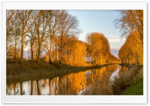 Channel Trees Yellow Light HD Wide Wallpaper for Widescreen