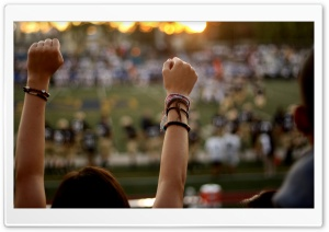 Cheering Fan HD Wide Wallpaper for Widescreen