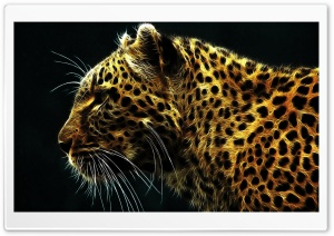 Cheetah In Fire HD Wide Wallpaper for Widescreen