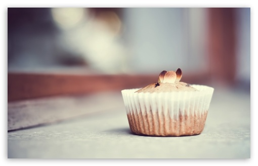 Chesnut Muffin HD wallpaper for Wide 16:10 5:3 Widescreen WHXGA WQXGA WUXGA WXGA WGA ; HD 16:9 High Definition WQHD QWXGA 1080p 900p 720p QHD nHD ; UHD 16:9 WQHD QWXGA 1080p 900p 720p QHD nHD ; Standard 4:3 5:4 3:2 Fullscreen UXGA XGA SVGA QSXGA SXGA DVGA HVGA HQVGA devices ( Apple PowerBook G4 iPhone 4 3G 3GS iPod Touch ) ; Tablet 1:1 ; iPad 1/2/Mini ; Mobile 4:3 5:3 3:2 16:9 5:4 - UXGA XGA SVGA WGA DVGA HVGA HQVGA devices ( Apple PowerBook G4 iPhone 4 3G 3GS iPod Touch ) WQHD QWXGA 1080p 900p 720p QHD nHD QSXGA SXGA ; Dual 16:10 5:3 4:3 5:4 WHXGA WQXGA WUXGA WXGA WGA UXGA XGA SVGA QSXGA SXGA ;