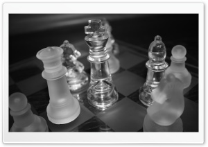 Chess King HD Wide Wallpaper for Widescreen