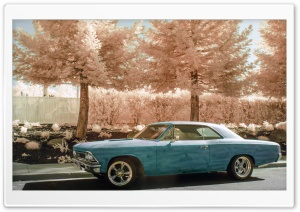 Chevelle HD Wide Wallpaper for Widescreen