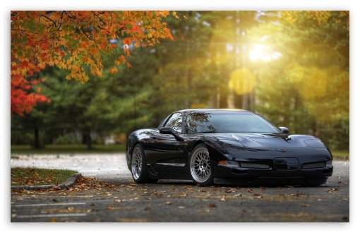 Chevrolet Corvette ❤ 4K UHD Wallpaper for Wide 16:10 5:3 Widescreen WHXGA WQXGA WUXGA WXGA WGA ; 4K UHD 16:9 Ultra High Definition 2160p 1440p 1080p 900p 720p ; Standard 4:3 5:4 3:2 Fullscreen UXGA XGA SVGA QSXGA SXGA DVGA HVGA HQVGA ( Apple PowerBook G4 iPhone 4 3G 3GS iPod Touch ) ; Tablet 1:1 ; iPad 1/2/Mini ; Mobile 4:3 5:3 3:2 16:9 5:4 - UXGA XGA SVGA WGA DVGA HVGA HQVGA ( Apple PowerBook G4 iPhone 4 3G 3GS iPod Touch ) 2160p 1440p 1080p 900p 720p QSXGA SXGA ; Dual 16:10 5:3 16:9 4:3 5:4 WHXGA WQXGA WUXGA WXGA WGA 2160p 1440p 1080p 900p 720p UXGA XGA SVGA QSXGA SXGA ;