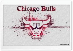 CHICAGO BULLS by Rzabsky...