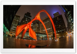 Chicago Flamingo HD Wide Wallpaper for Widescreen