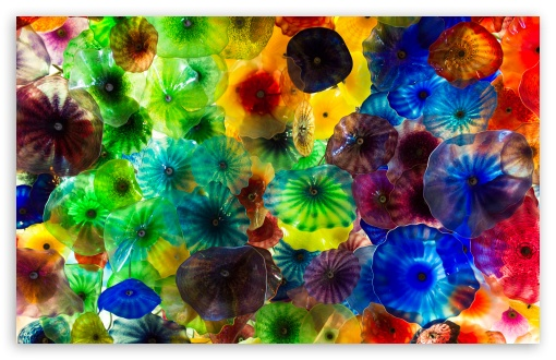 Chihuly Glass Art UltraHD Wallpaper for Wide 16:10 5:3 Widescreen WHXGA WQXGA WUXGA WXGA WGA ; 8K UHD TV 16:9 Ultra High Definition 2160p 1440p 1080p 900p 720p ; UHD 16:9 2160p 1440p 1080p 900p 720p ; Standard 4:3 5:4 3:2 Fullscreen UXGA XGA SVGA QSXGA SXGA DVGA HVGA HQVGA ( Apple PowerBook G4 iPhone 4 3G 3GS iPod Touch ) ; Tablet 1:1 ; iPad 1/2/Mini ; Mobile 4:3 5:3 3:2 16:9 5:4 - UXGA XGA SVGA WGA DVGA HVGA HQVGA ( Apple PowerBook G4 iPhone 4 3G 3GS iPod Touch ) 2160p 1440p 1080p 900p 720p QSXGA SXGA ; Dual 16:10 5:3 16:9 4:3 5:4 WHXGA WQXGA WUXGA WXGA WGA 2160p 1440p 1080p 900p 720p UXGA XGA SVGA QSXGA SXGA ;