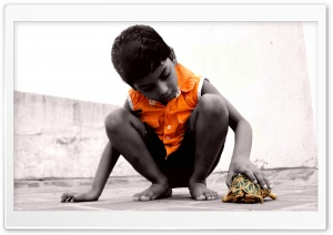 Child & Turtle HD Wide Wallpaper for Widescreen