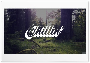 Chillin Forest HD Wide Wallpaper for 4K UHD Widescreen desktop & smartphone