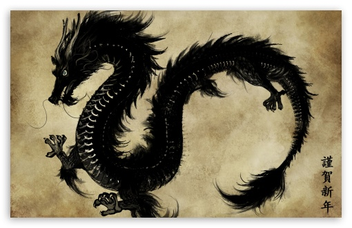 Chinese Black Dragon HD wallpaper for Wide 16:10 5:3 Widescreen WHXGA WQXGA WUXGA WXGA WGA ; HD 16:9 High Definition WQHD QWXGA 1080p 900p 720p QHD nHD ; Standard 4:3 3:2 Fullscreen UXGA XGA SVGA DVGA HVGA HQVGA devices ( Apple PowerBook G4 iPhone 4 3G 3GS iPod Touch ) ; iPad 1/2/Mini ; Mobile 4:3 5:3 3:2 - UXGA XGA SVGA WGA DVGA HVGA HQVGA devices ( Apple PowerBook G4 iPhone 4 3G 3GS iPod Touch ) ;