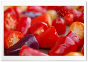 Chinese Five Color Peppers HD Wide Wallpaper for Widescreen
