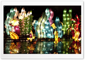 Chinese Lantern Festival HD Wide Wallpaper for Widescreen