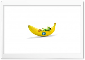 Chiquita With Frog Funny HD Wide Wallpaper for Widescreen