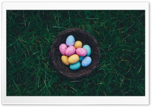 Chocolate Easter Eggs Nest HD Wide Wallpaper for 4K UHD Widescreen desktop & smartphone