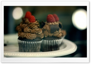 Chocolate Muffins HD Wide Wallpaper for Widescreen