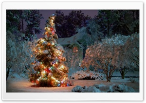 Christmas At Night HD Wide Wallpaper for Widescreen