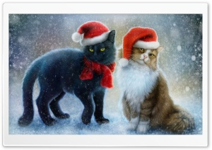 Christmas Cats HD Wide Wallpaper for Widescreen