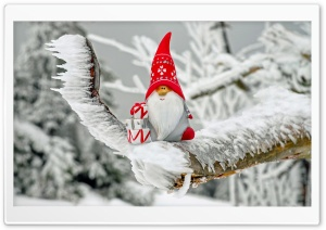 Christmas Gnome HD Wide Wallpaper for Widescreen