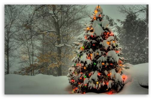 Christmas Lights 9 Ultra Hd Desktop Background Wallpaper For