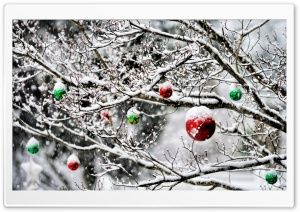 Christmas Ornaments In The Snow HD Wide Wallpaper for Widescreen