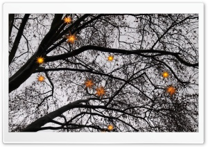 Christmas Stars Ultra HD Wallpaper for 4K UHD Widescreen desktop, tablet & smartphone