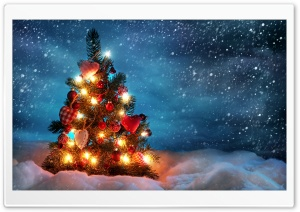 Christmas Tree HD Wide Wallpaper for 4K UHD Widescreen desktop & smartphone